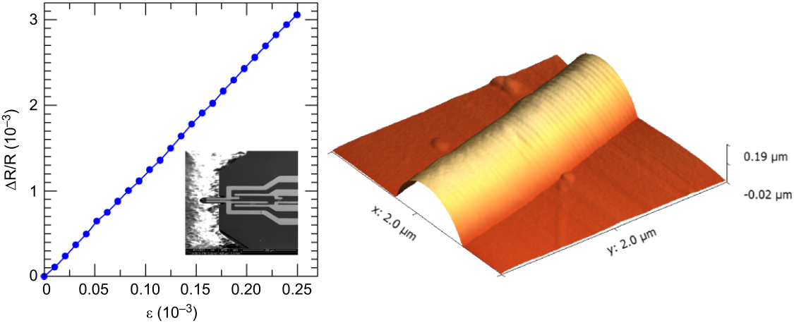 a conduction of the beilstein test Surface plasmon resonance in gold nanoparticles: a  of one electron in the conduction band and creation of a hole in the lower  test [208, 226] plasmon.