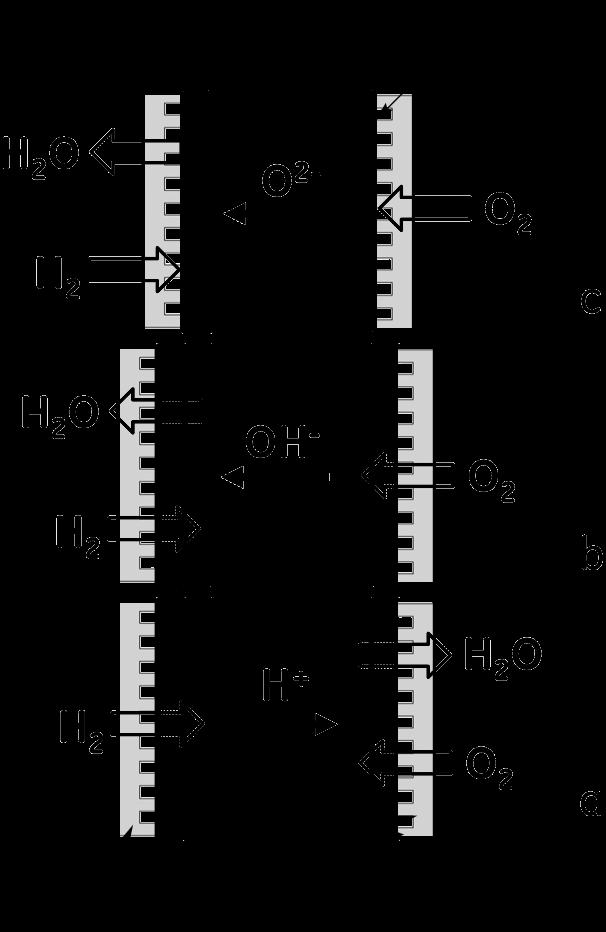 Ion Exchange Membrane Electrode Ion-exchange Membranes