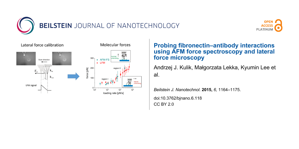 Probing fibronectin–antibody interactions using AFM force