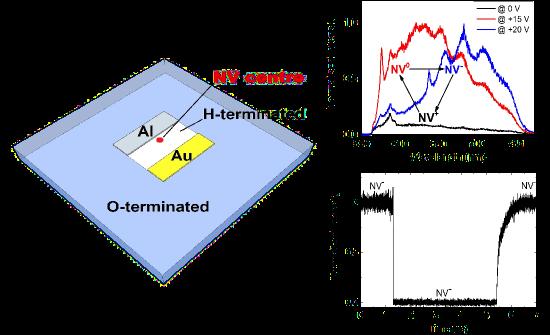 metamorphasis analysis