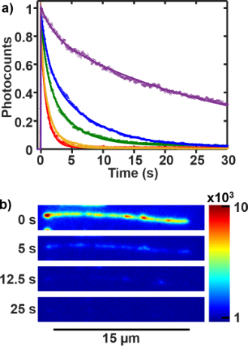 Photobleaching of YOYO-1 in super-resolution single DNA fluorescence