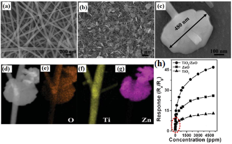 Electrospun one-dimensional nanostructures: a new horizon