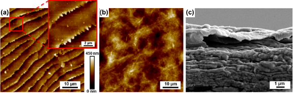 Characterization Of The Microscopic Tribological Properties Of