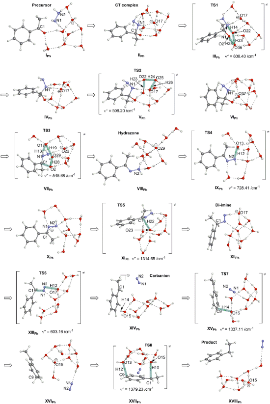 acetone background of the study From this point of view, the theory that transportable c3 fragments can serve as additional nutrients is a novel view of acetone metabolism which introduces a new approach to the study of acetone degradation, especially in understanding its physiological function and the interrelationship between liver and peripheral.