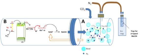 An integrated photocatalytic/enzymatic system for the