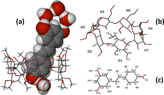 Figure 12 Structure of the  H2o Atomic Structure