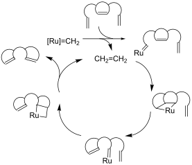 grubbs olefin metathesis mechanism Olefin metathesis: catalysts used for this reaction [4] [5a-g]: comparison between grubbs and schrock catalysts [9][10]: general mechanism: categories of olefin.