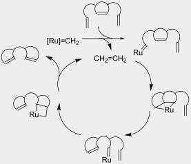 grubbs ring closing metathesis