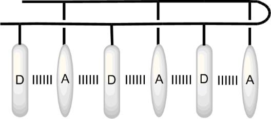 Supramolecular chemistry: from aromatic foldamers to