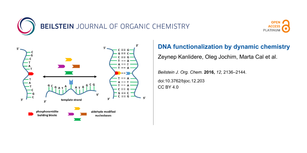 Dna functionalization by dynamic chemistry share graphic maxwellsz