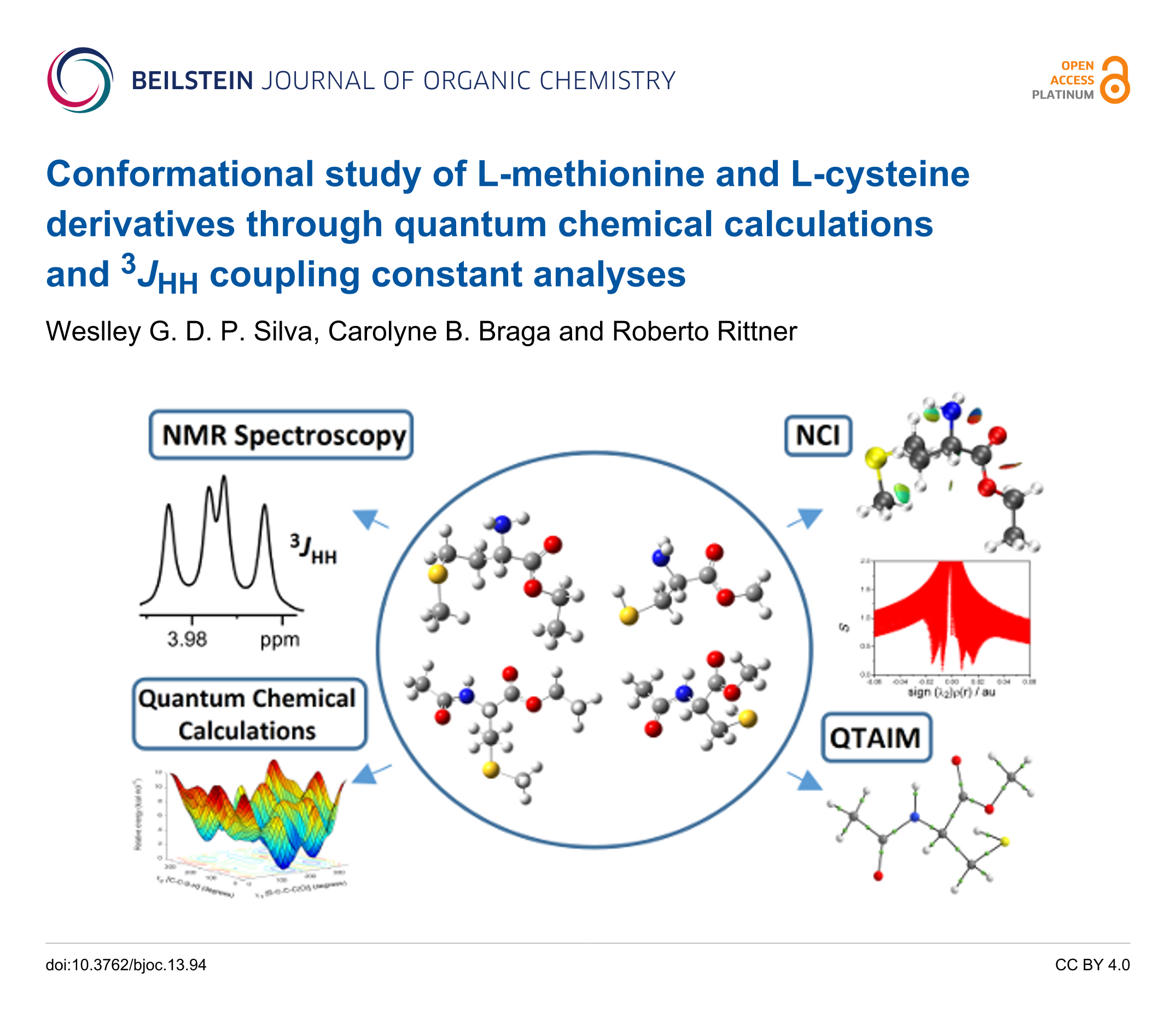 conformational study of l methionine and l cysteine derivatives