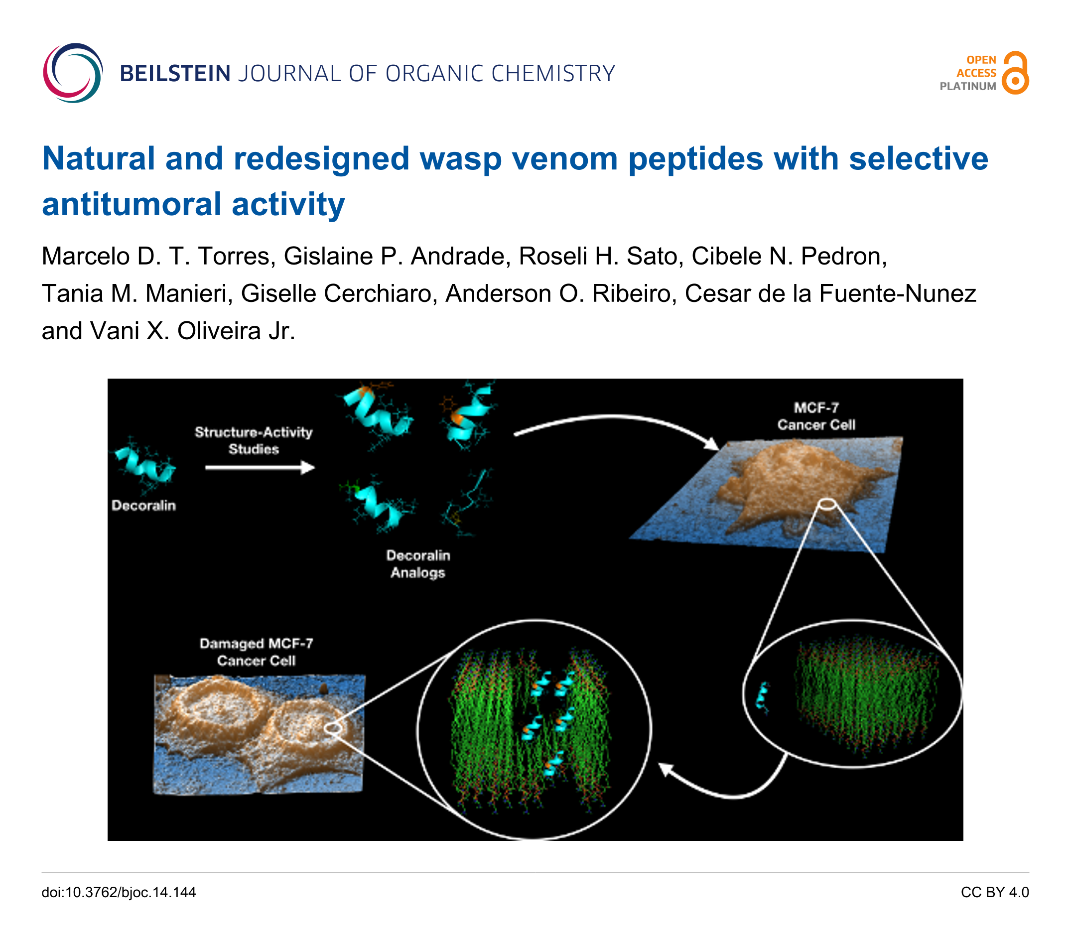 Natural And Redesigned Wasp Venom Peptides With Selective Schematic Process Of Carbon Dating Tree Rings Using The C14 System Back To Article