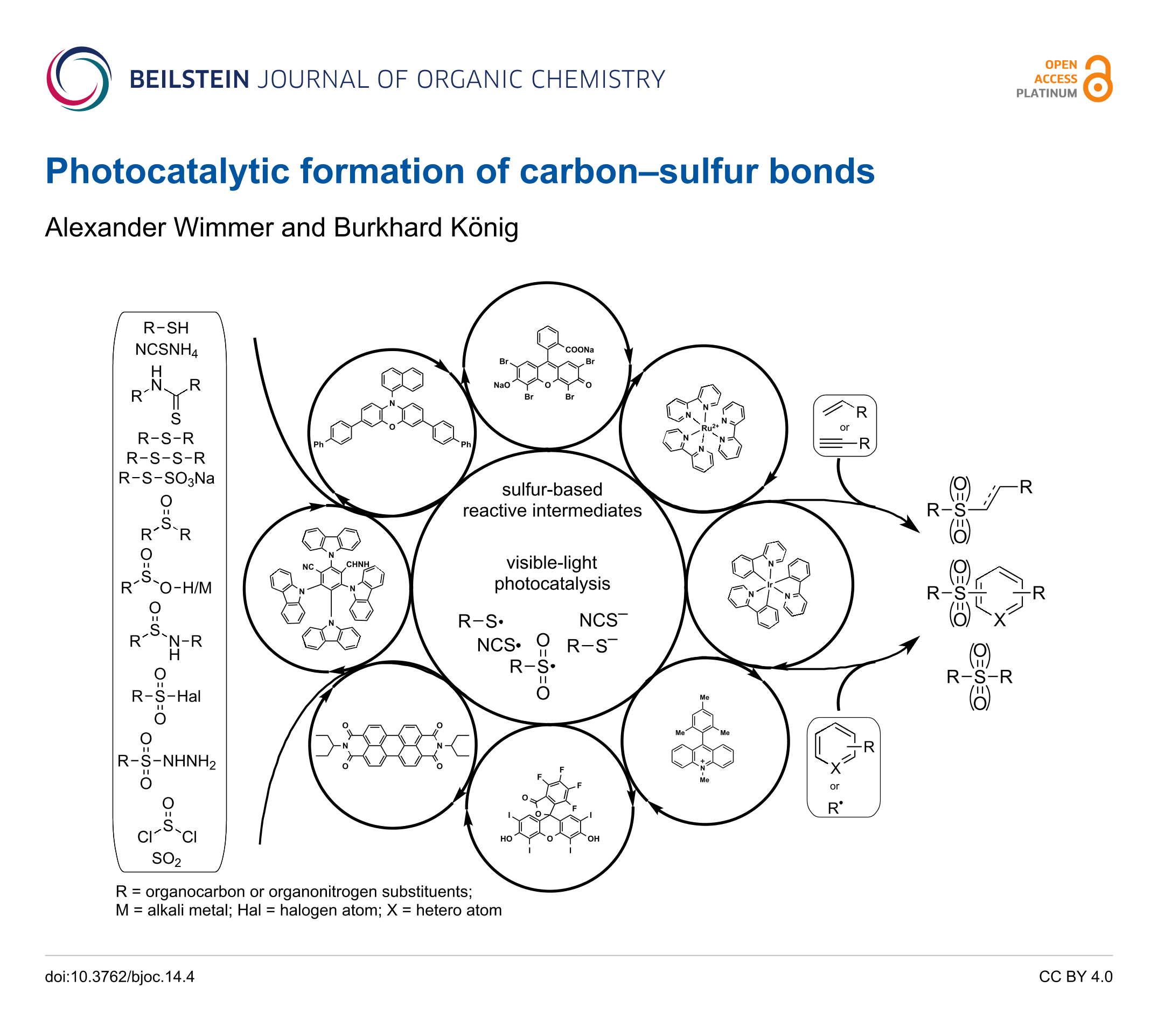 Schematic Process Of Carbon Dating Tree Rings Using The C14 System Photocatalytic Formation Carbonsulfur Bonds Back To Article