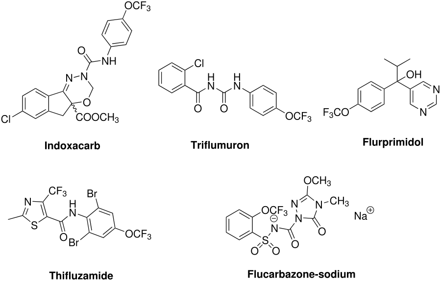 Trifluoromethyl ethers