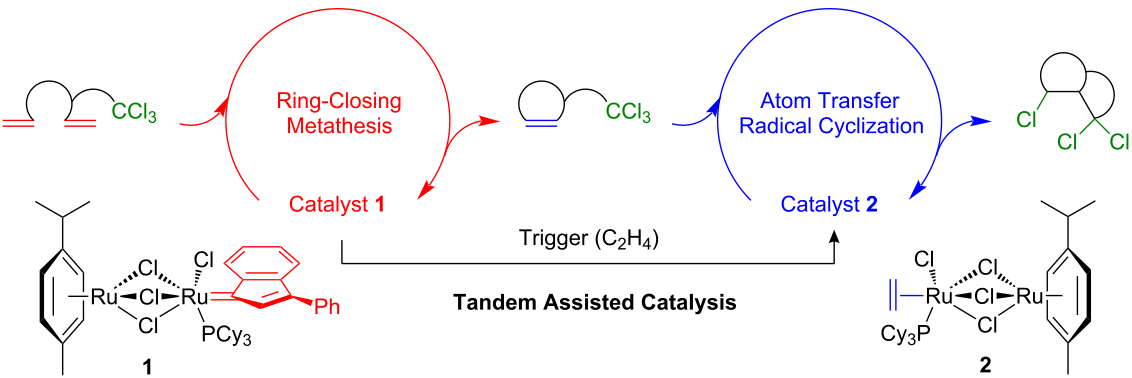 diethyl diallylmalonate ring closing metathesis Ring-closing metathesis  a kinetic study of the rcm of diethyl diallylmalonate using a ru-methylidene describes two possible mechanisms for olefin metathesis.