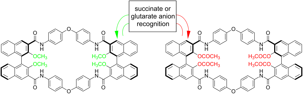 5b macrocyclic synthesis prelab