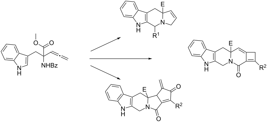 Synthesis and in silico screening of a library of β