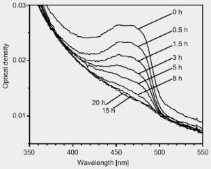 Synthesis and photooxidation of styrene copolymer bearing