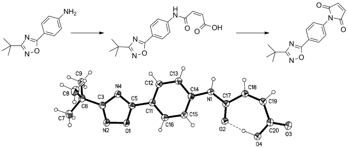 1 2 4 oxadiazole moiety molecules synthesis for cancer Various biological activities of coumarin and oxadiazole  there are three known isomers: 1,2,4-oxadiazole,  [mso4]: synthesis of coumarins molecules.
