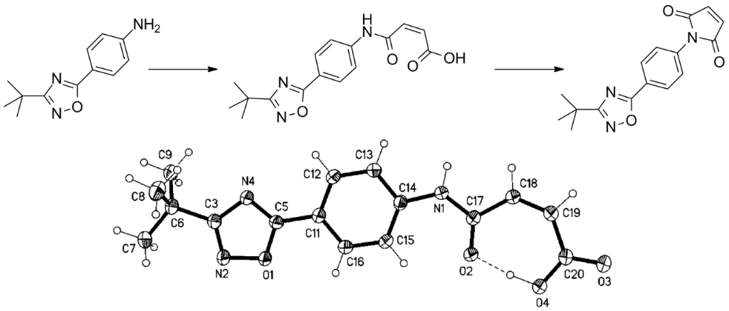 Synthesis and characterization of novel bioactive 1,2,4