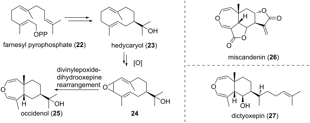 Recent Applications Of The Divinylcyclopropane