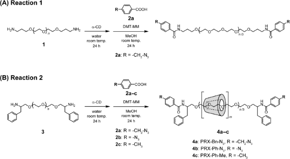 Versatile synthesis of end-reactive polyrotaxanes applicable