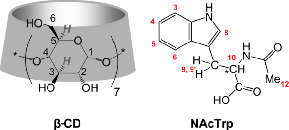 synthesis of acetophenetidin by amide synthesis