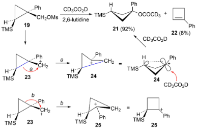 The cyclopropylcarbinyl route to γ-silyl carbocations
