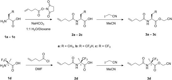 conquering chemistry preliminary pdf download