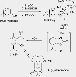 Some aspects of radical chemistry in the assembly of